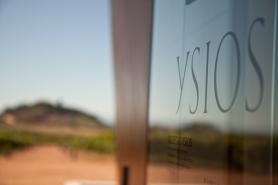 012_wine_Davide_Solfaroli_Camillocci_2016